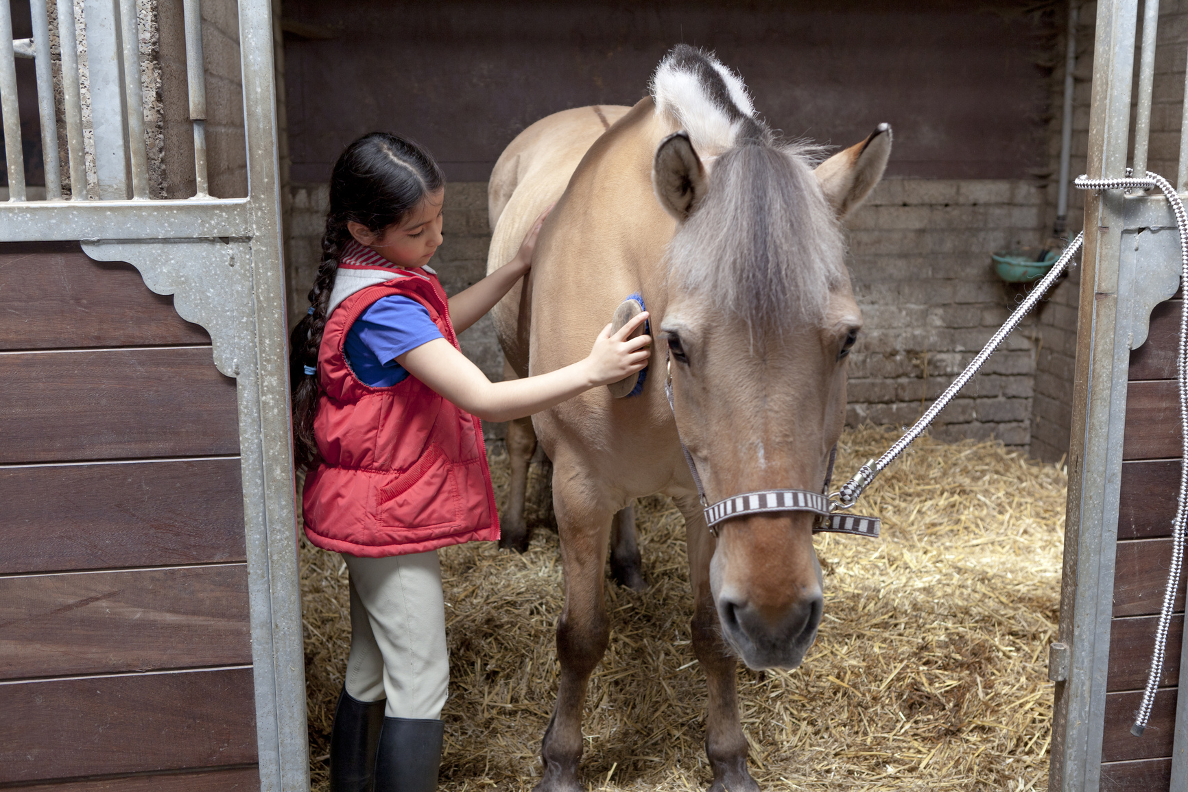 caring for horses Figuring out how to care for a horse can be overwhelming at first, but basic horse  care doesn't have to be hard - we're here to help with this quick list.