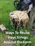 Hay Strings