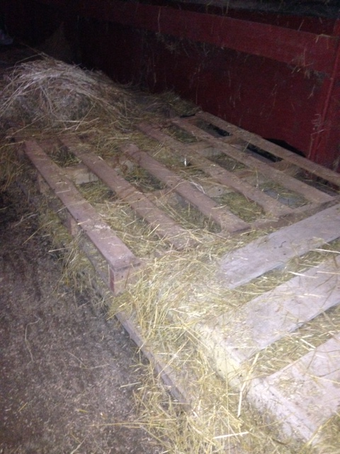 Cool Ways To Reuse Hay Strings Pallets Horseshoes