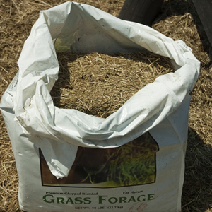 chopped-forage
