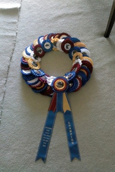 What You Can Do With Horse Show Ribbons | EcoEquine