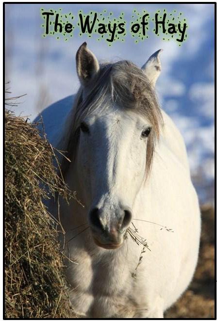 Happy Horse Healthy Planet.Ways of Hay