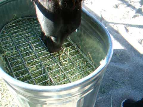 There Are Many Different Styles And Sizes To Fit All Kinds Of Feeding  Needs, From Feeding Big Round Bales Using A Net System To Feeding Flakes Of  Hay Using ...