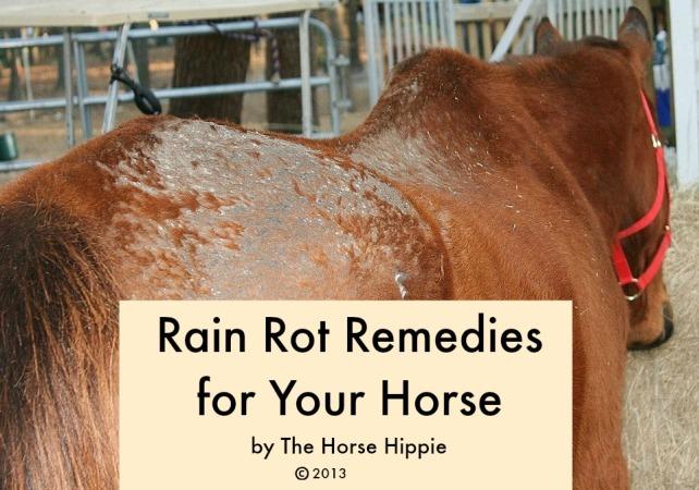 Rain Rot Cover