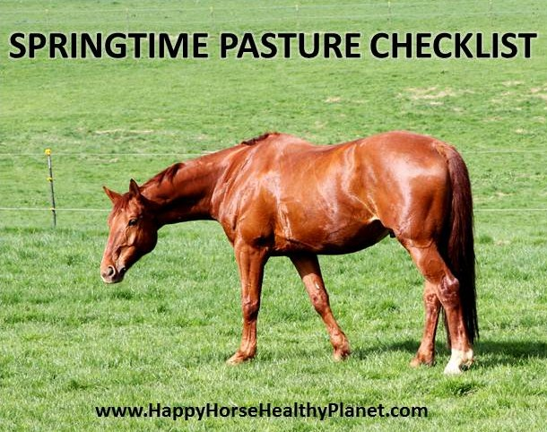 Happy Horse Healthy Planet_Pasture Checklist Cover