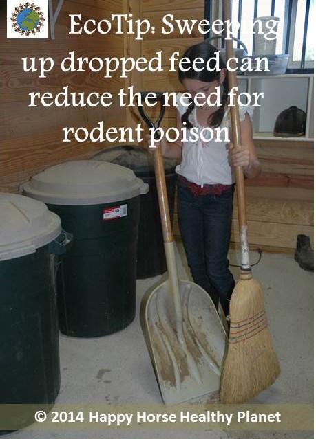 EcoTip_Sweeping