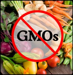 No-GMO2_celestialhealing.net