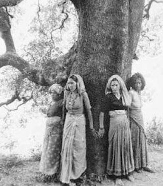 Chipko-movement-hugging-tree-in-India-fiaruse