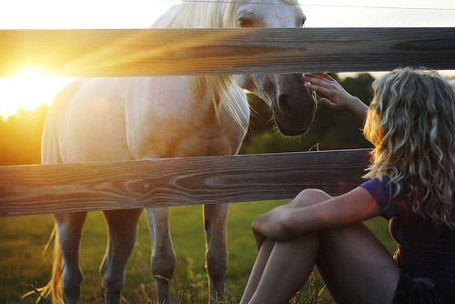 girl-horse-photography-white-favim-com-972496