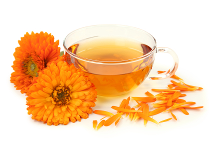 calendula-essential-oil-6
