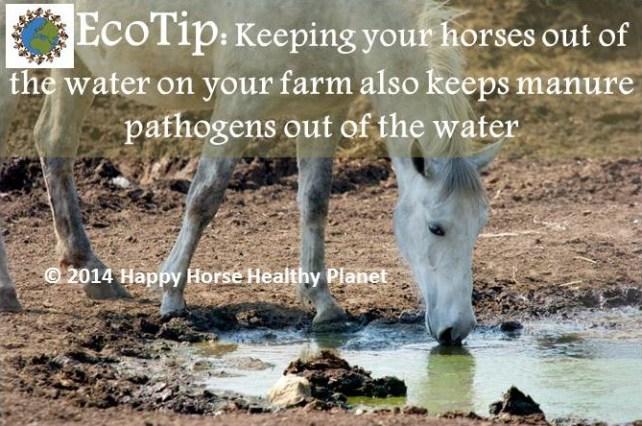 ecotip_water