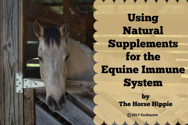 EcoEquine Natural Supplements_Immune