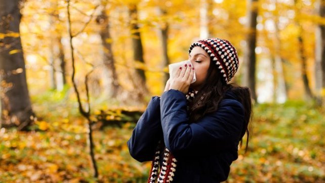 cs-tips-for-fall-allergy-relief-1440x810